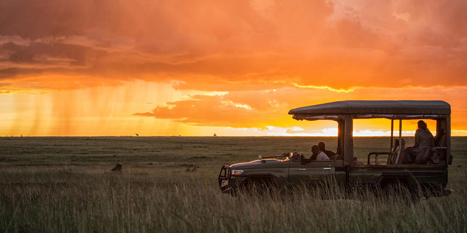 © Mara Plains