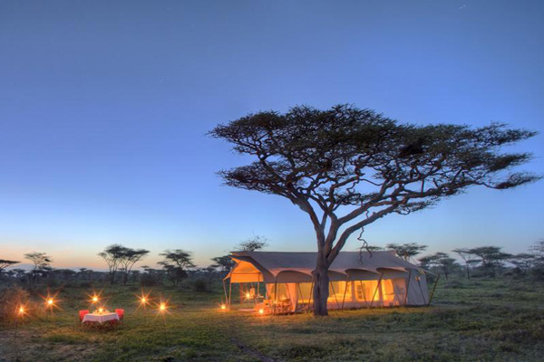 Serengeti Under Canvas, Tanzania