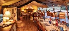 Offbeat Mara Camp