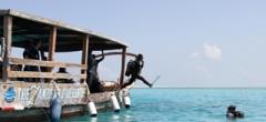Diving in Matemwe