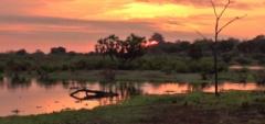 Client photo - sunrise.