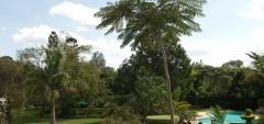 House of Waine - gardens