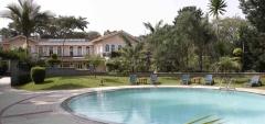 House of Waine - pool