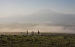 Itinerary photo - Amboseli