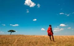 Masai Mara - Masai