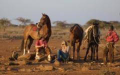 Kenya - horse riding